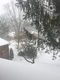Guten Morgen lieber Schnee!